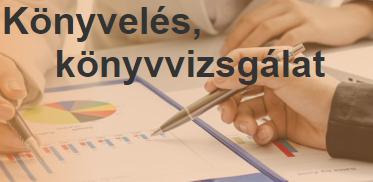 Könyvelés Komárom-Esztergom megye - Turul Könyvelő és Szolgáltató Kft.